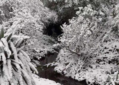 Cascade in snow